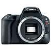 Canon EOS Rebel SL2 Digital SLR - Body Only
