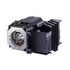 Canon Replacement Lamp RS-LP06 for WUX4000  and  WUX4000 D DICOM