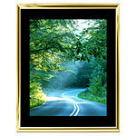 11x14 Custom Gold Metal Frame, Black Mat with Glass