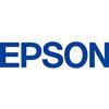Epson Metallic Photo Paper, Lustre 13x19