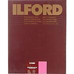 Ilford Multigrade FB Warmtone Paper (Glossy, 20x24, 10 Sheets)