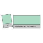 LEE Filters Fluorescent 5700k Lighting Correction Gel Filter