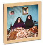 Alessandra Sanguinetti - The Adventures of Guillermina and Belinda and The I