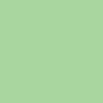 Savage Background 107x36 Mint Green