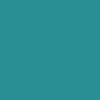 Savage Background 53x36 Teal