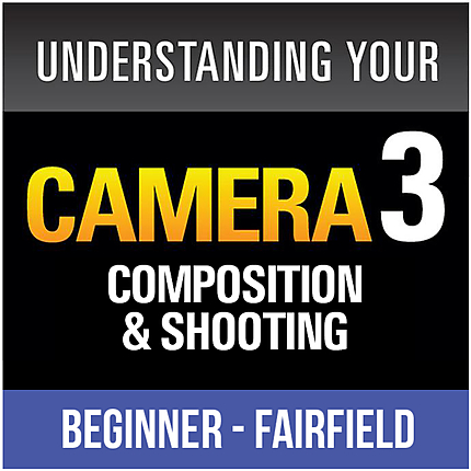 Understanding Your Camera III: White Balance and Composition