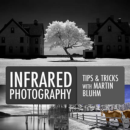 Tips and Tricks of Infrared Photography with Martin Bluhm