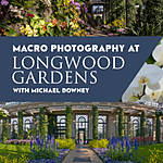 Macro Photography at Longwood Gardens with Michael Downey
