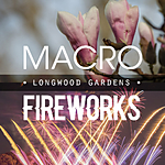 Macro and Fireworks at Longwood Gardens with Michael Downey