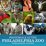 Photowalk at the Philadelphia Zoo